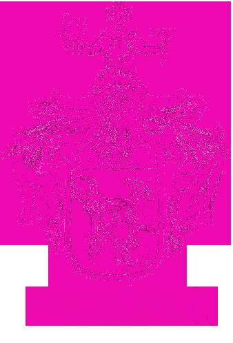 Dackelzucht Kreidlers Dachsmagic